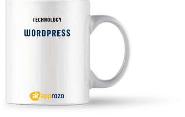 Software Development Company India - Approzo